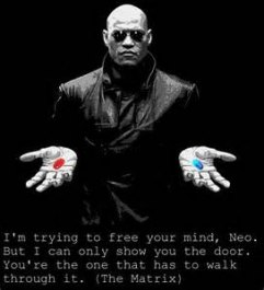 matrix - red pill